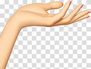 tangan kiri seseorang, Tangan, Tangan PNG clipart