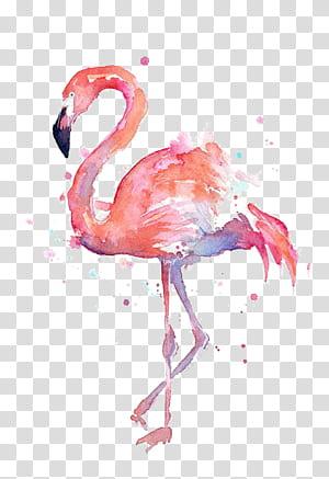 Kertas Kaos Flamingo Lukisan Cat Air Seni Grafis, Gambar Flamingo, Lukisan Flamingo png