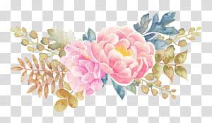 Bunga lukisan Cat Air, Peony bunga cat air dicat elemen bunga, lukisan bunga peony merah muda png