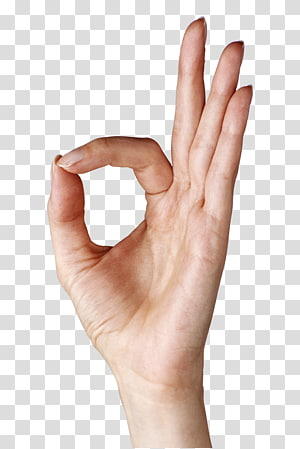 OK Gerakan Tangan, Menampilkan Tangan OK, penandatanganan tangan manusia ok PNG clipart