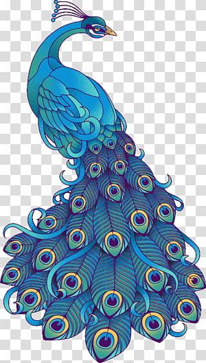 merak hitam dan hijau, Seni visual Gambar Burung Merak, Tangan-dicat burung merak biru yang indah png