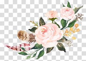 Hadiah Anting-Anting, Etsy, Font Belanja, Cat air bunga pink, Sen Department, ilustrasi mawar merah muda png