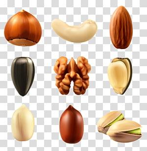 varietas kolase kacang, Nucule Kacang campuran Euclidean Buah kering, Koleksi Kacang Clipar png
