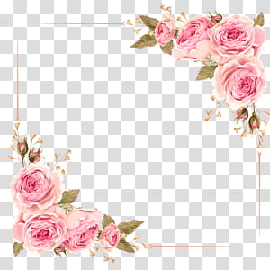 Undangan pernikahan Flower Rose Pink, Rose Border, pink rose flower bingkai digital png