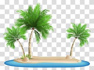 Beach, Palm Trees Island, ilustrasi spanduk png