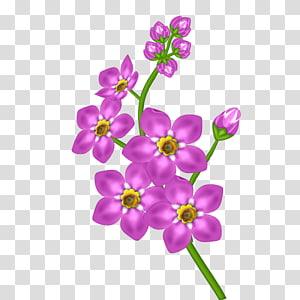 ilustrasi bunga petaled pink, Bunga Ungu, Bunga Merah Muda png