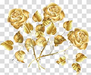 Mawar Emas Mawar Laut kreatif, ilustrasi bunga mawar emas png