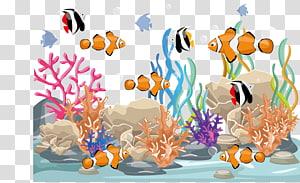 ikan badut dan kupu-kupu, Ikan, berenang ikan png