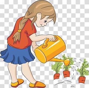 Penyiraman dapat Menanam Benih Kebun, Penyiraman s png