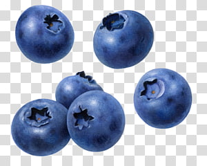 buah blueberry, Buah Blueberry Raspberry, blueberry png