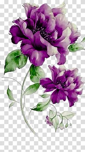 Bunga Ungu Desain bunga, bunga ungu, peony ungu png
