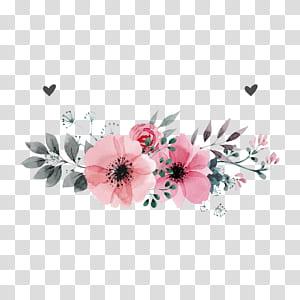 Undangan pernikahan Bunga, Bunga merah muda, ilustrasi bunga merah muda dengan latar belakang putih png