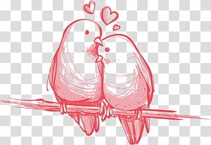 Hadiah Pernikahan Hari Valentine Burung, Love birds yang dilukis dengan tangan, dua burung yang bertengger di atas ranting pohon png