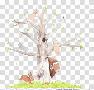 binatang di pohon, lukisan Cat Air Kartun Ilustrasi, Ilustrasi indah tangan Departemen Kehutanan png