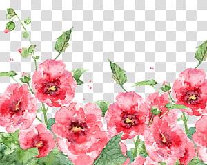 Lukisan cat air Bunga Cat Air Burung-dan-bunga lukisan, bunga musim semi Cat Air, lukisan bunga petaled merah muda png