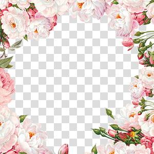 Bahan bingkai bunga yang dilukis dengan tangan, ilustrasi bunga mawar merah muda dan putih png