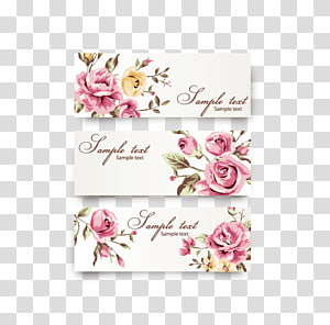 ilustrasi bunga merah muda, Rose Flower Euclidean, Undangan Pernikahan png
