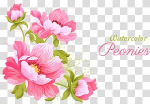 Bunga merah muda Undangan pernikahan Lukisan cat air, Bahan bunga pink, bunga merah muda dengan hamparan teks png