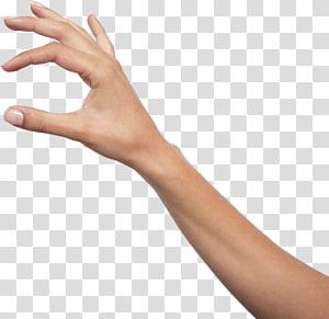lengan manusia kiri, Memegang tangan Ikon, Tangan, tangan bebas PNG clipart