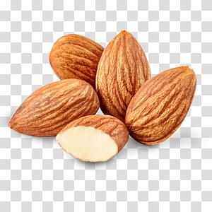 kacang almond, minyak kacang Almond Minyak kacang Almond, almond png