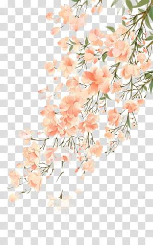 Lukisan cat air Bunga, Antiquity ilustrasi cat air yang indah, pohon sakura png