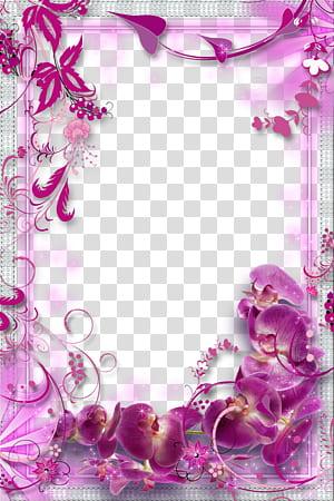 Bunga Ungu, latar belakang perbatasan bunga Ungu, lukisan bunga ungu png