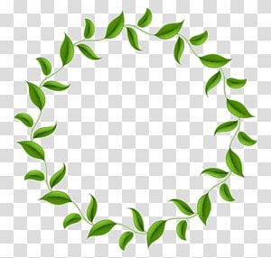 Lingkaran Lingkaran Daun Teh, Perbatasan lingkaran hijau, tanaman berdaun hijau png
