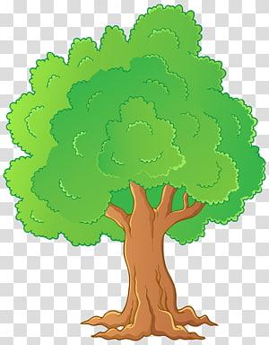 ilustrasi digital pohon hijau dan coklat, Pohon, Pohon png