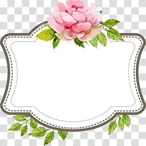 Keterlibatan Pernikahan, Batas label teks pernikahan indah, ilustrasi papan tulis aksen bunga merah muda png