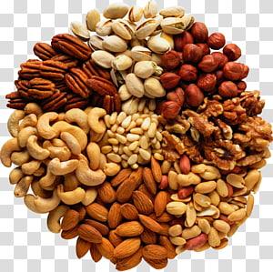 berbagai macam ilustrasi kacang, Kacang Mete Kenari Makanan, pistachio png