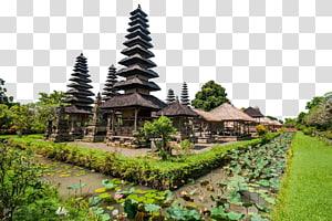rumah kayu coklat dikelilingi oleh pohon dan tanaman, Ubud Pura Taman Ayun Tanah Lot Pura Ulun Danu Bratan Pura Bali, Istana Ubud png