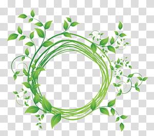 , Diagram bingkai bulat daun hijau, ilustrasi tanaman hijau png