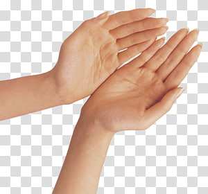 Jari Tangan, Dua Tangan, tangan seseorang PNG clipart
