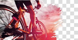 pengendara sepeda di bawah langit kelabu selama jam emas, Racing Poster Cycling, Cycling PNG clipart
