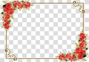 Menggambar Bunga, Perbatasan Mawar Merah, bingkai mawar merah png