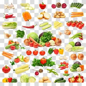 berbagai macam ilustrasi kolase sayuran, Selamanya Produk Vitamin C Mineral Aloe vera, sayuran png