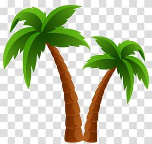 ilustrasi dua pohon kelapa, Pohon Arecaceae, Dua Pohon Kelapa png