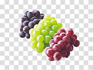 anggur ungu, hijau, dan merah, Grape Seedless Fruit Auglis Food, anggur PNG clipart