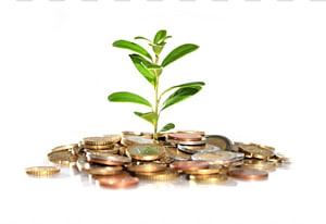 Money Devil, ivy Investment Bank, Menanam, uang jatuh png