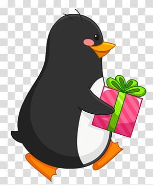Penguin hitam dan putih memegang ilustrasi kotak hadiah, Penguin Amazon.com Hadiah Natal Kartu hadiah, Penguin dengan Hadiah png