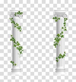 dua pilar putih, rangka Ionic Euclidean, kolom Hias png