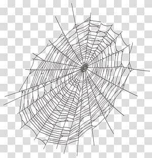 Jaring laba-laba, Halloween Jaring Laba-laba Besar, ilustrasi web laba-laba hitam png