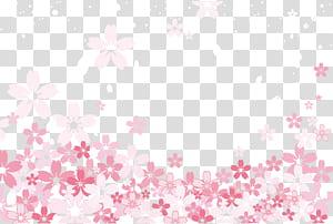 Pola Pink Tekstil, bahan latar belakang ilustrasi Sakura, bunga petaled pink dan putih png