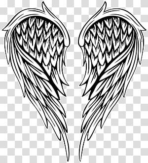 Ilustrasi Menggambar, sayap malaikat bulu dicat, ilustrasi sayap png