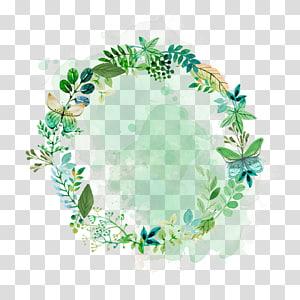 Bunga Tanaman Daun Euclidean, daun Cat Air, daun bundar png