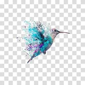 Lukisan Seni Tato Hummingbird, Hummingbird Cat Air, burung berwarna-warni PNG clipart