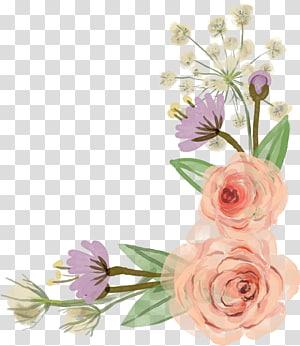 Bunga Mawar, Perbatasan Bunga, bunga putih png