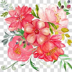 warna-warni bunga, lukisan Cat Air Bunga, bunga yang dilukis dengan Tangan png