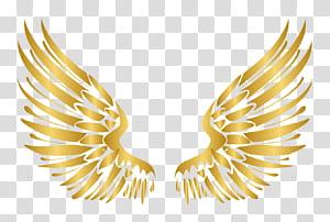 Elemen Kuku Euclidean, elemen Sayap Emas mewah bergaya Eropa, sayap bulu krem png