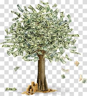 Uang kertas dolar AS, Moneytree, uang png